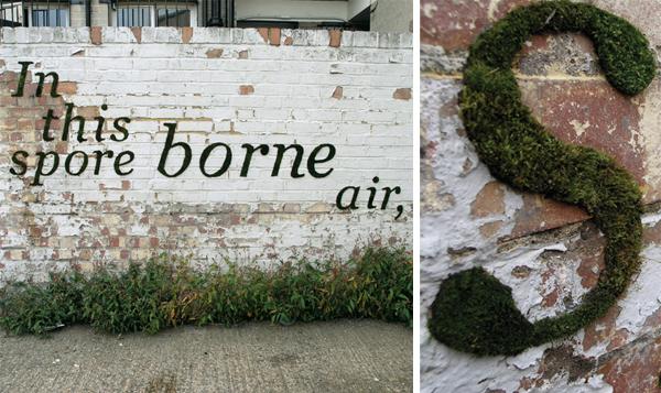 'Sporeborne' by Anna Garforth and Elly Steven
